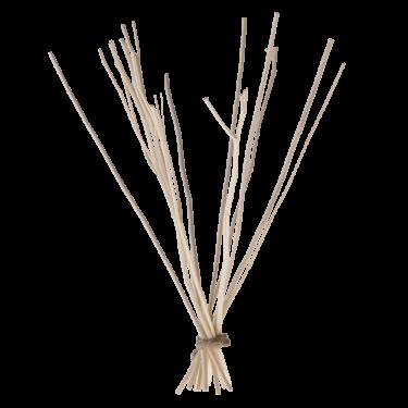 Bündel Kajute-Zweige klein für 50 ml Fläschchen