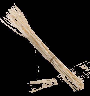 Bündel Kajute-Zweige groß für Vase 200ml